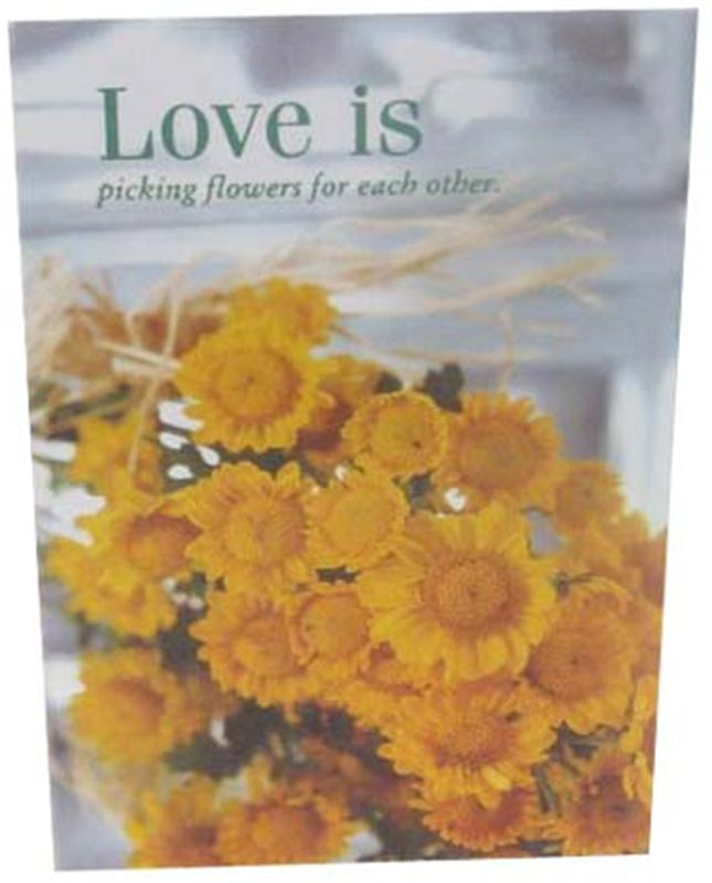 Love is Picking Flowers for Each Other Card (rl000040)