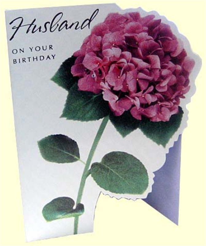 Birthday Card For Husband MICDRN079