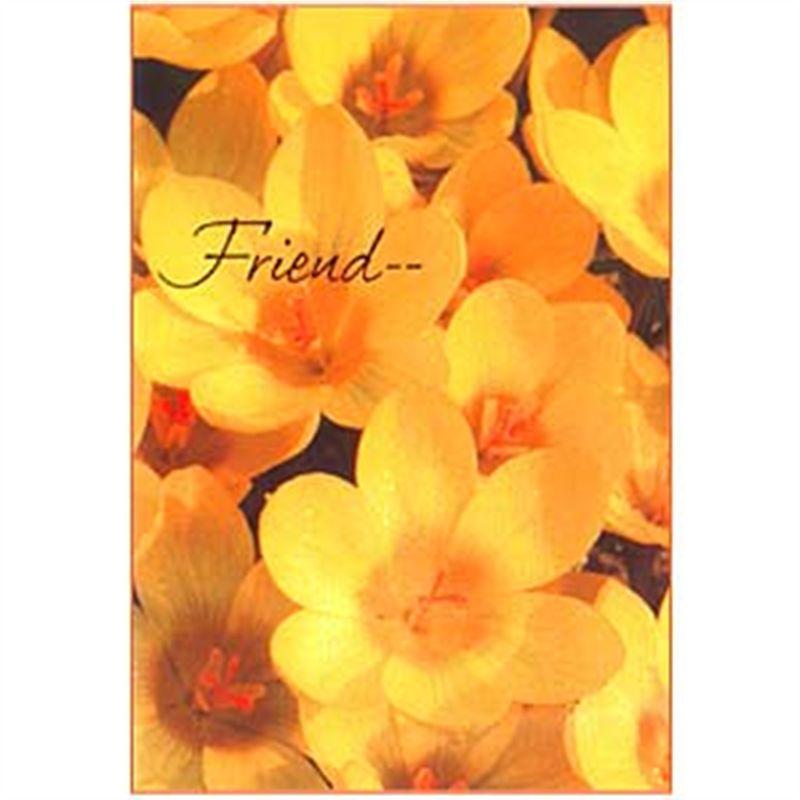Friend Card (rf000007)