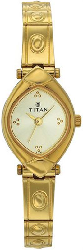 Titan Ladies Watch (2417YM02)