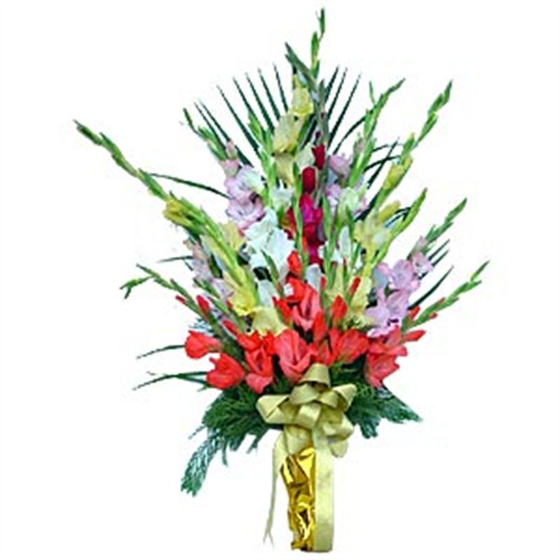 Flat Bouquet of Gladioli by Bodhi Brikshya