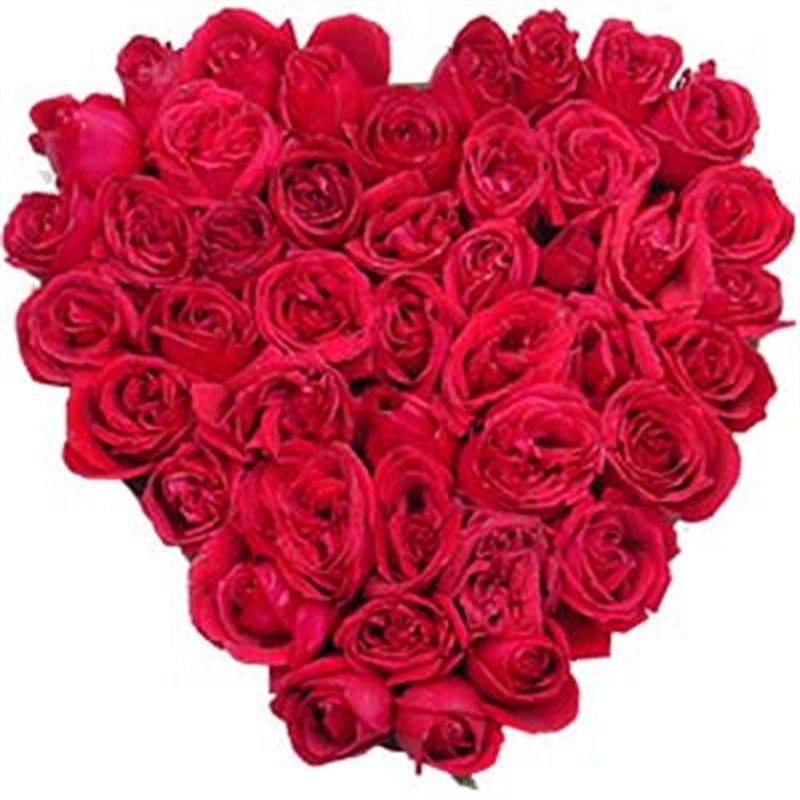 You're my heart you're my soul by Bodhi Brikshya