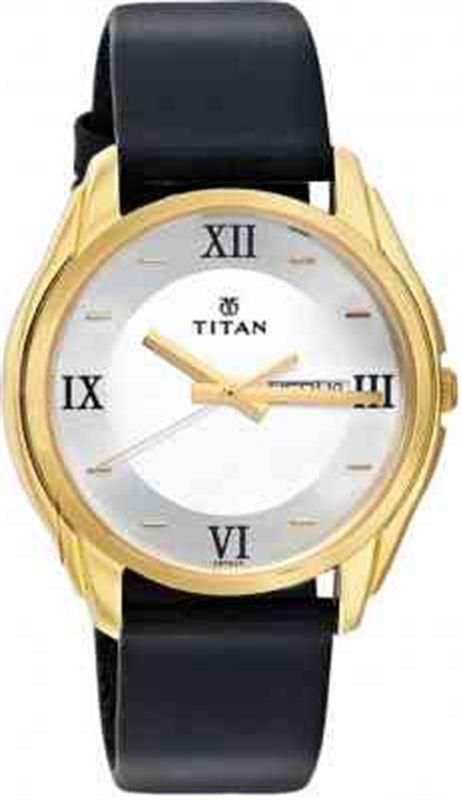 Titan Karishma Men's Watch (1578YL04)