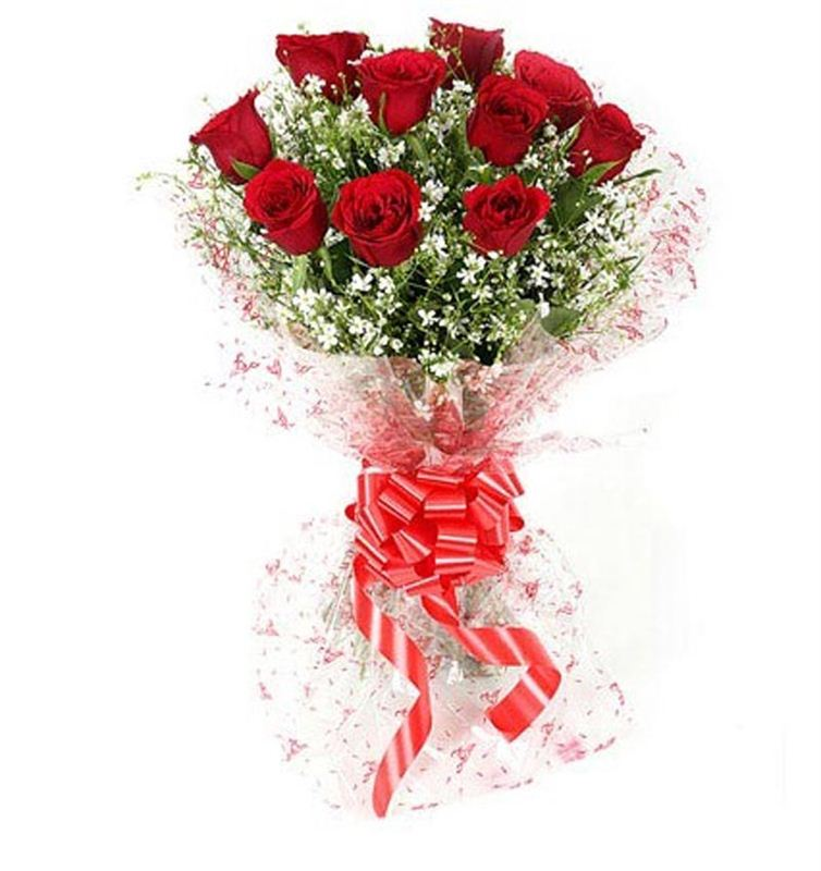 10 Red Roses with Cellophane Packing by FNP