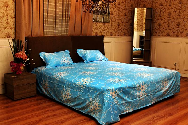 Flower Printed Bed Sheet in LT Pink and Sky Blue-King Size
