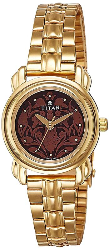 Titan Analog Brown Dial Women's Watch - 2534YM03
