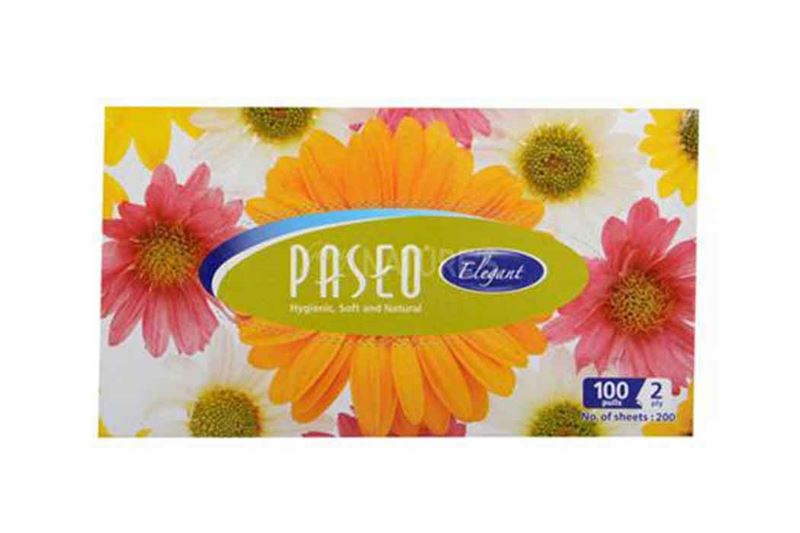 Paseo Box Tissue 100 Pulls 2ply