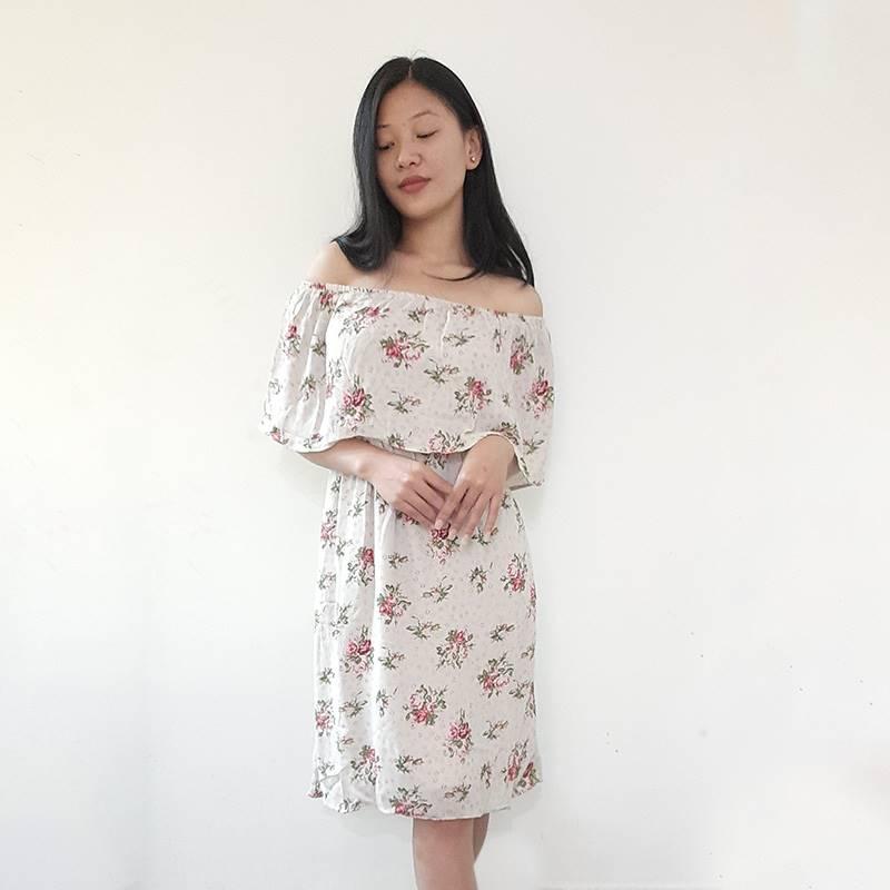 Flora Skater Dress (Bardot)