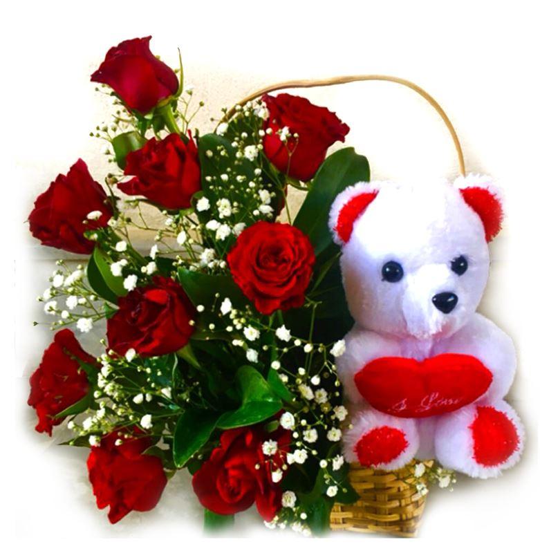 White Teddy Love by Bodhi Brikshya