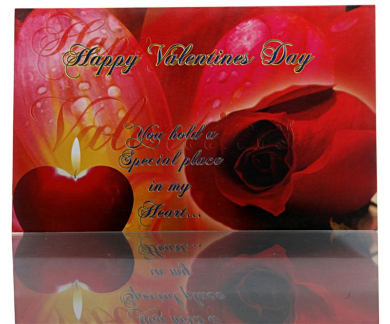 Happy Valentine's Day - You Hold a Special Place in My Heart - Card