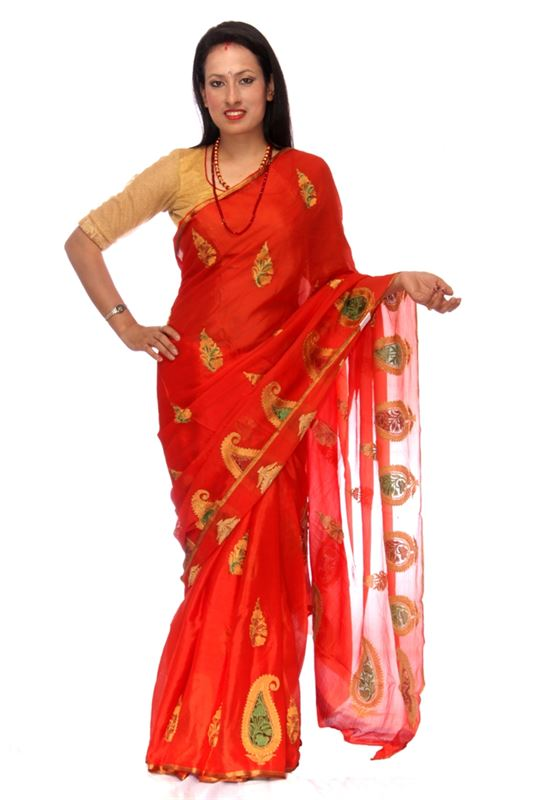 Plain Chinnon Silk Saree With Thread And Zari Embroidery And Zari Weaved Border - SareeOWWY-1