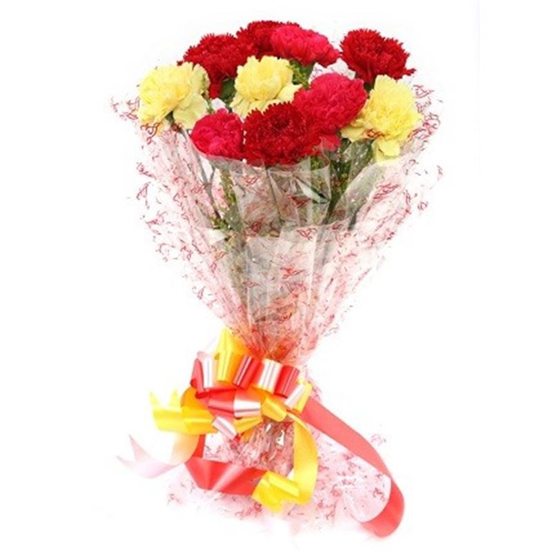 10 Mix Carnations with Cellophane Packing by FNP