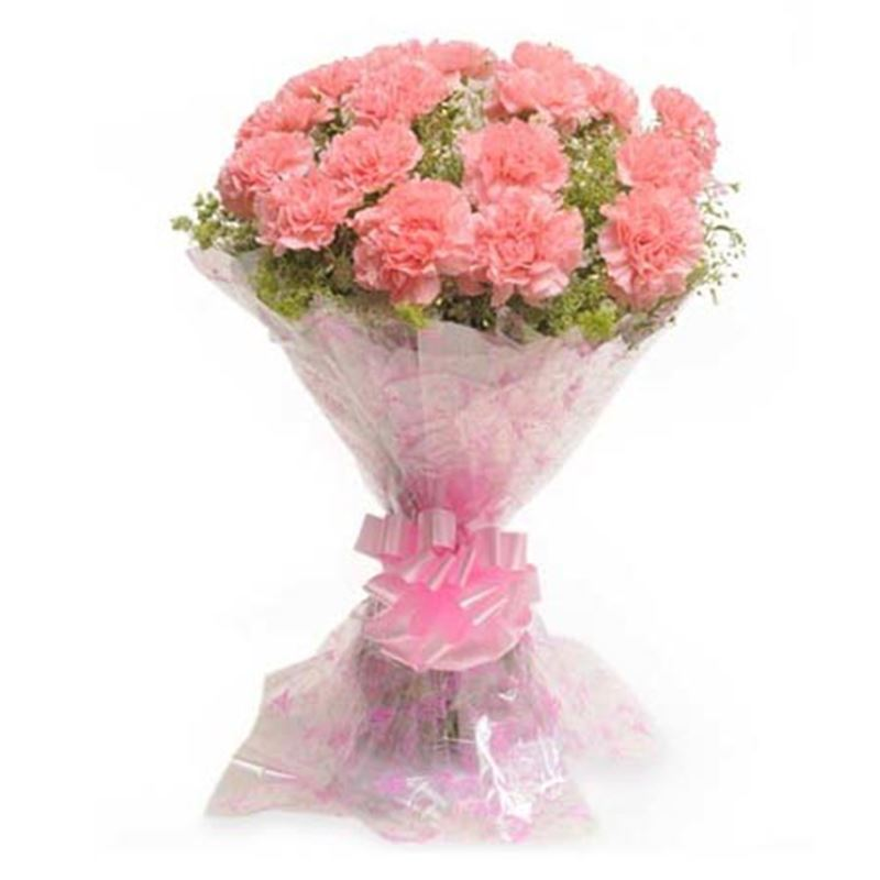 15 Pink Carnations with Cellophane Packing by FNP