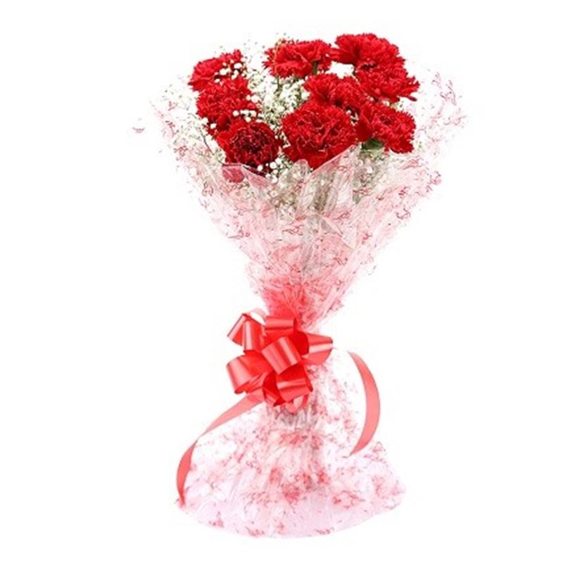 10 Red Carnations with Cellophane Packing by FNP