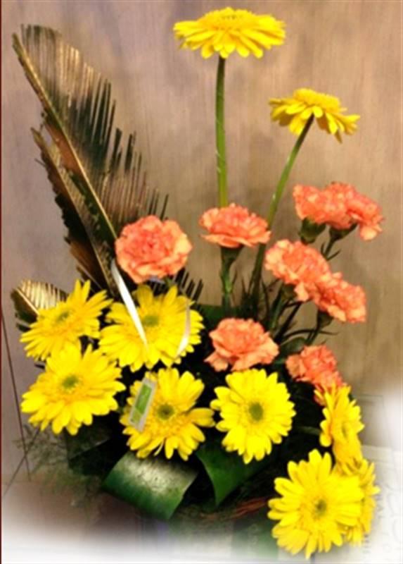 10 Gerberas, 8 Carnations in a Basket by FNP Flowers