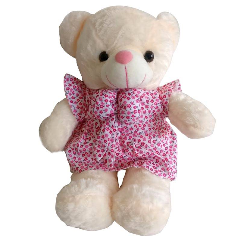 Small Teddy Bear in a Pink Dress