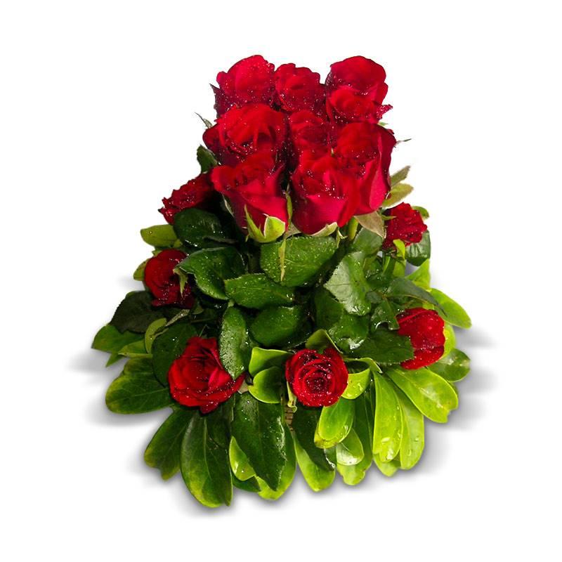 Bed of Roses by Himalayan Creative Hues