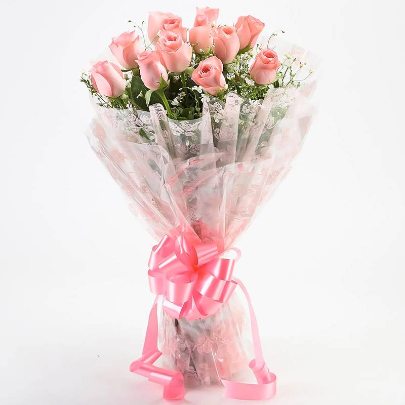 12 Pink Roses in Cellophane Packing