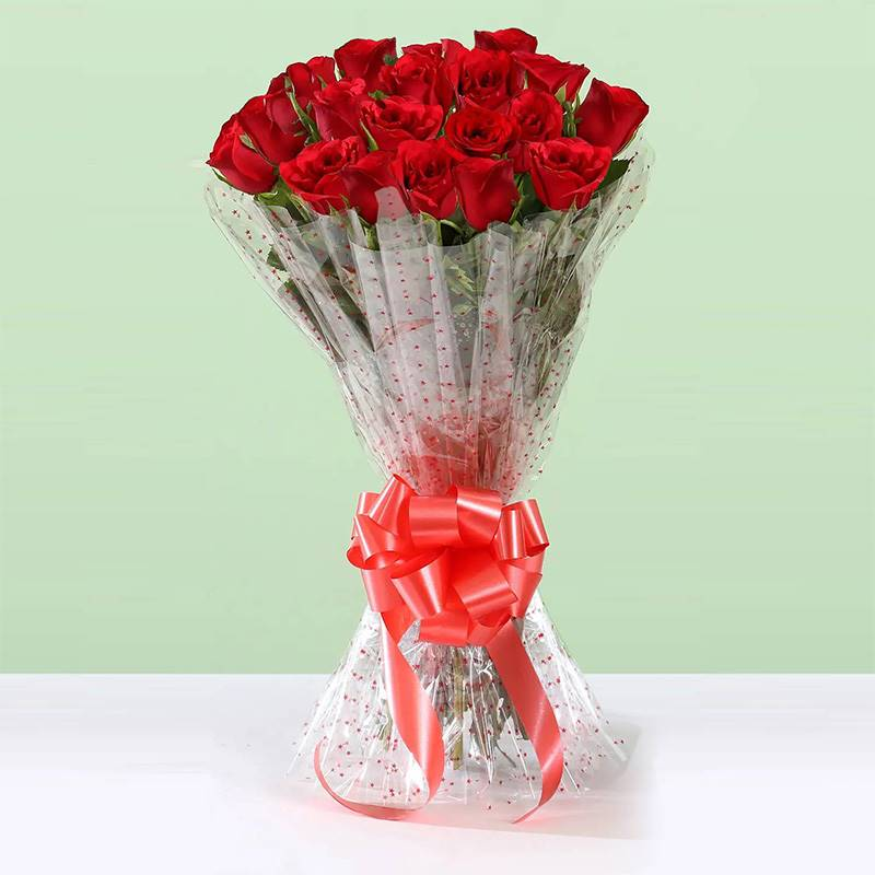 20 Red Roses in Cellophane Packing