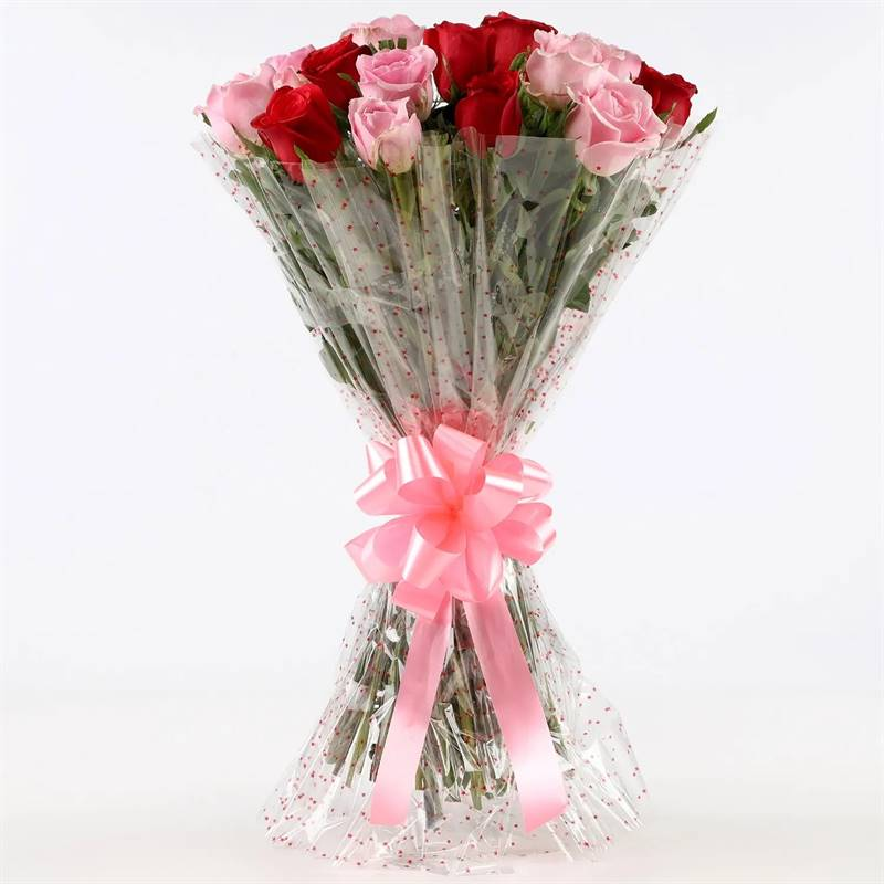 10 Red Roses and 10 Pink Roses in Cellophane Packing