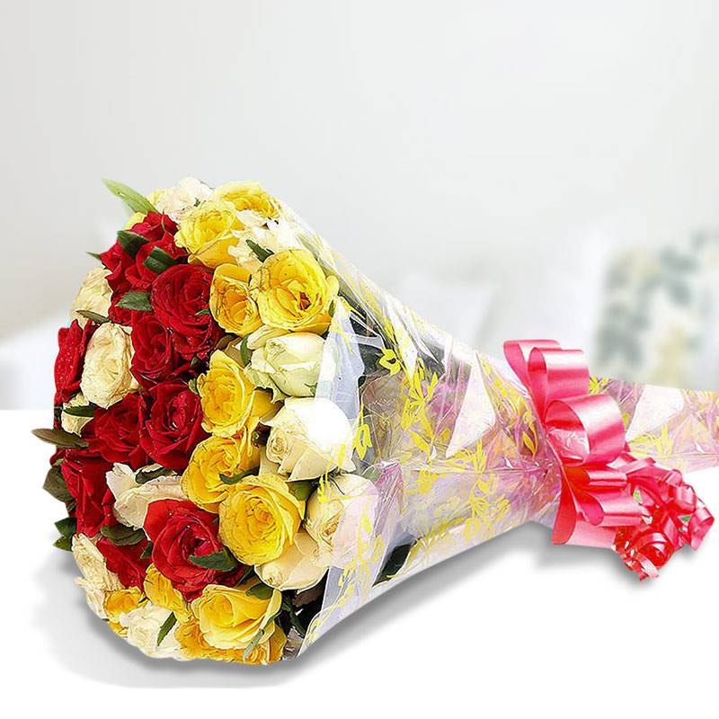 20 Mix Roses in Cellophane Packing